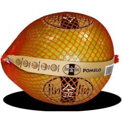 Pomelo chino