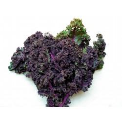 Col Kale Roja