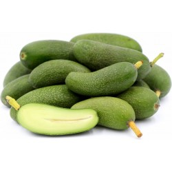 Aguacates Snack Baby