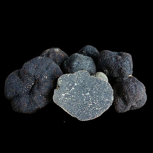 Trufa Negra Fresca (Tuber Melanosporum)