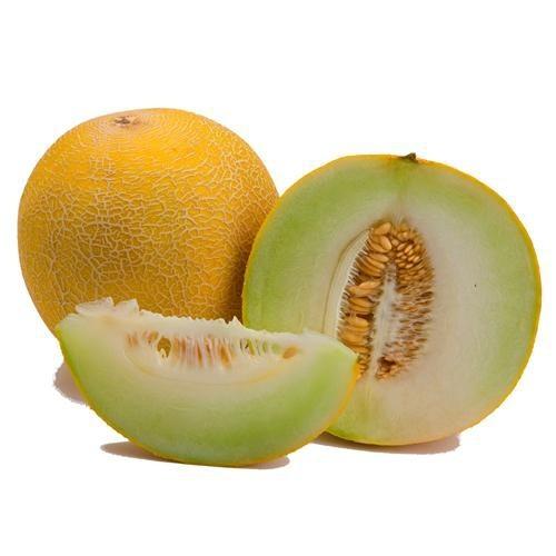 Melon galia (unidad)