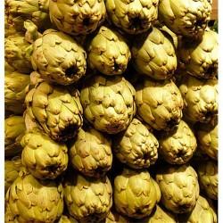 Alcachofas de tudela