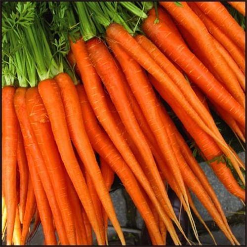 Mini zanahorias