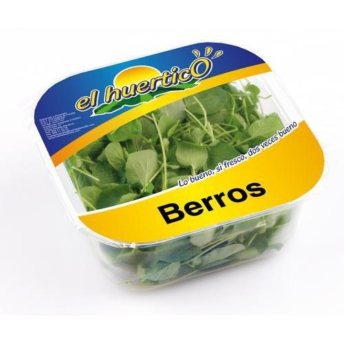 Berros